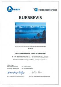 Kursbevis lederkonferanse Molde
